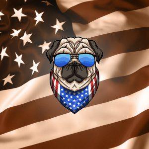 USA Dog
